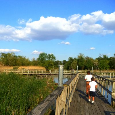15 Summer activities to help your kids appreciate nature with Joe from Nature Rated