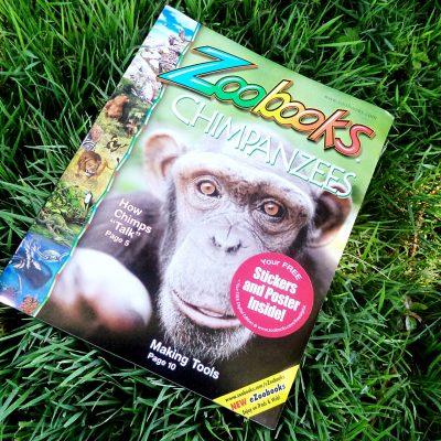 Amazing Wildlife Adventures with Zoobooks + Giveaway